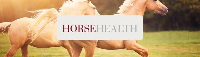 HorseHealth